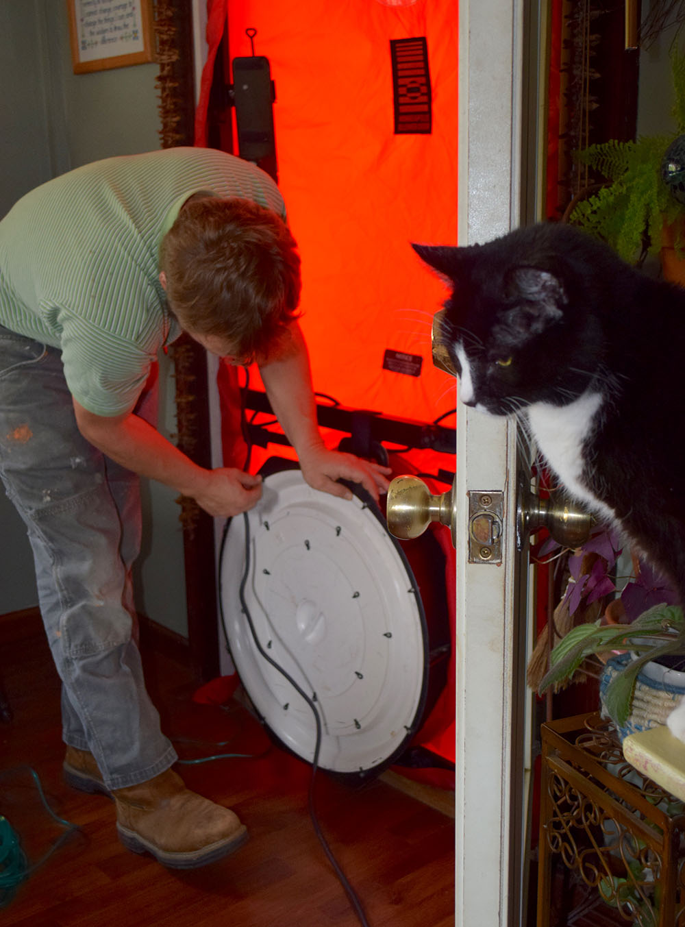 Setting up the blower door for testing