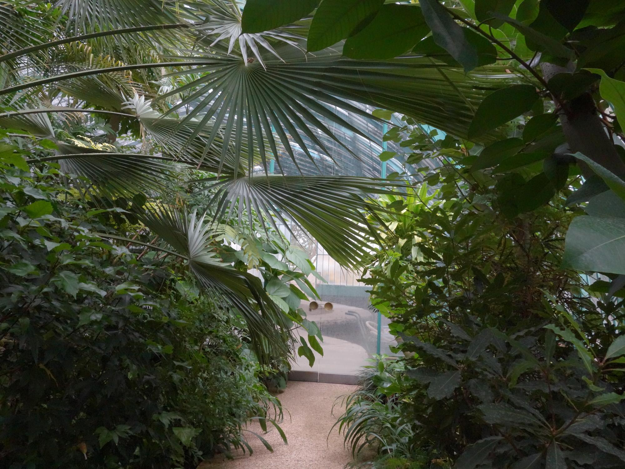 8_Le Jardin des Serres.jpg