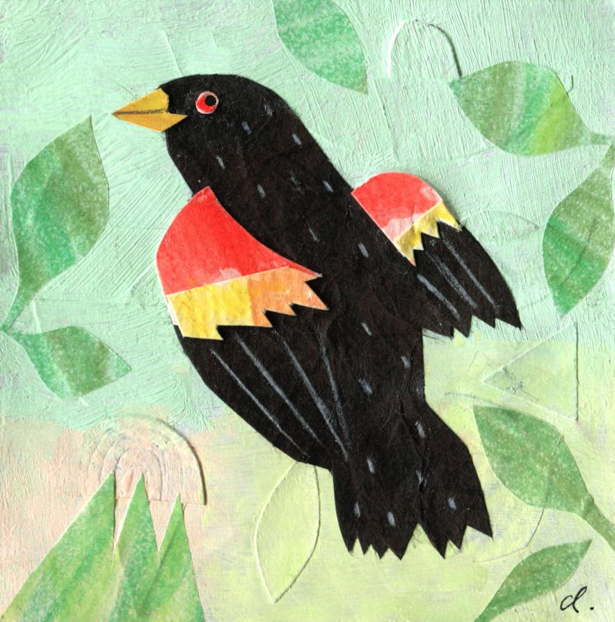 Red-Winged Black Bird post it.jpg