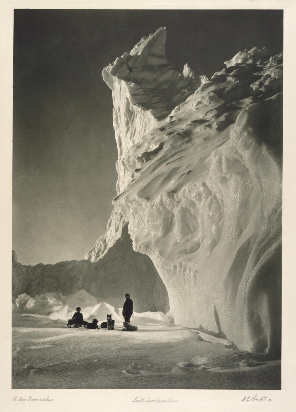 A dog team rests on the icy, mountainous terrain. Photo by Herbert G. Ponting/ © Victoria and Albert Museum, London