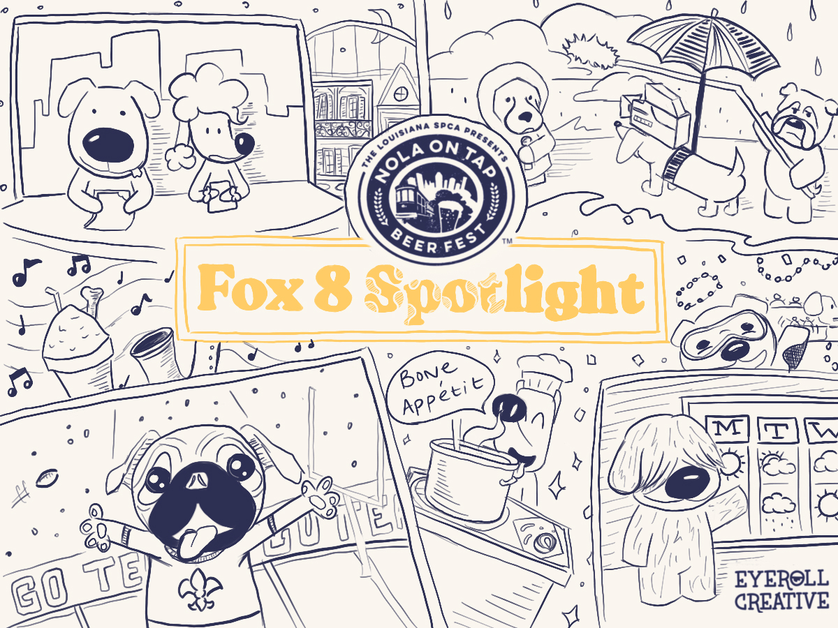 Fox8_Installation.jpg
