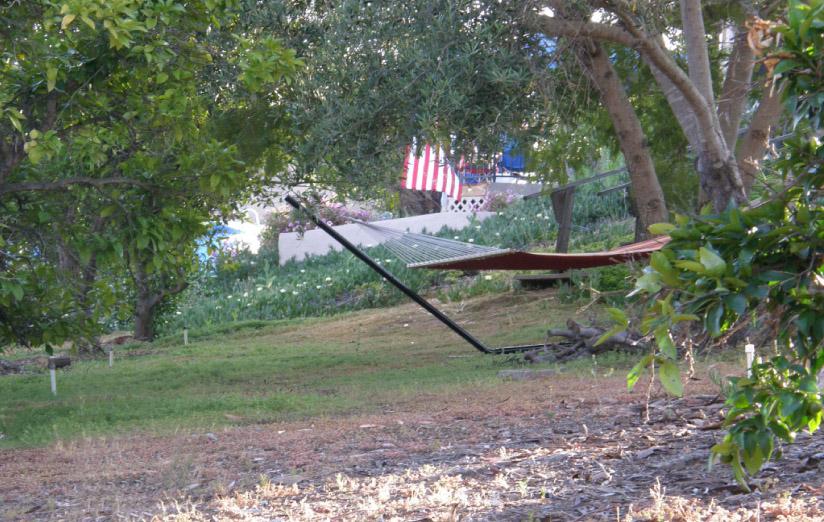 One of two hammocks
