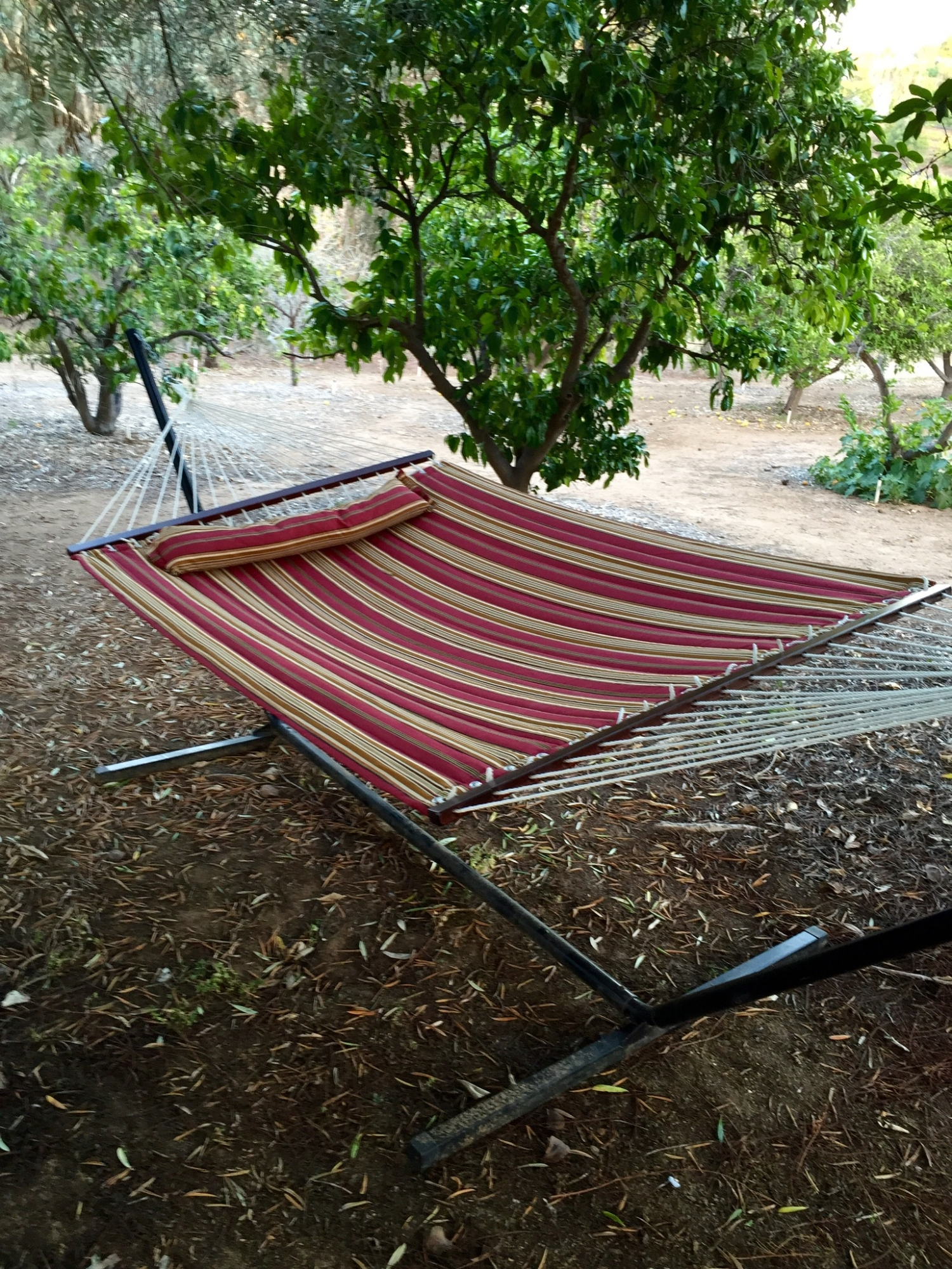 Hammock in the grotto