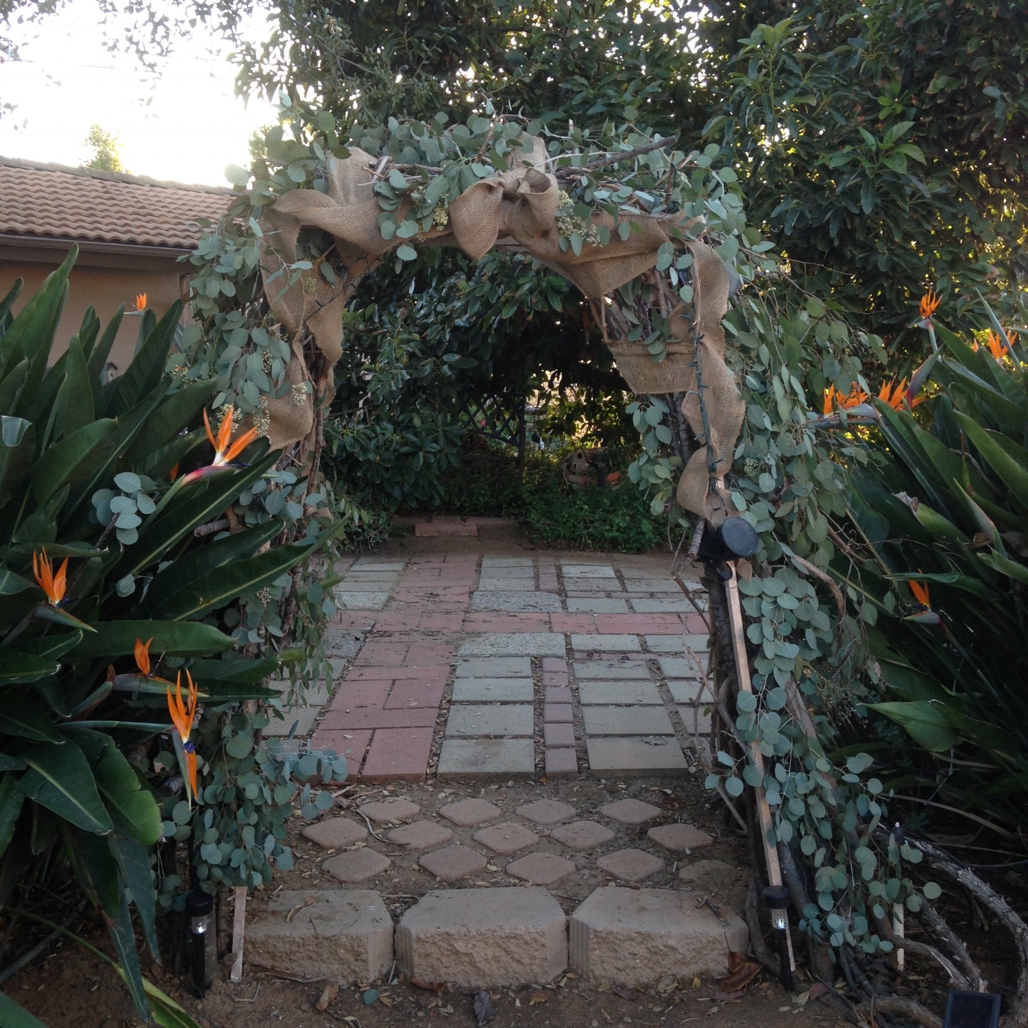 Arch by the Oak and Avacado