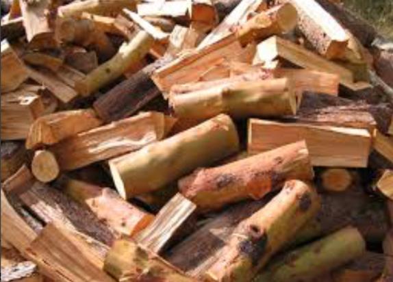 EarthLine Excavations fire wood.jpeg