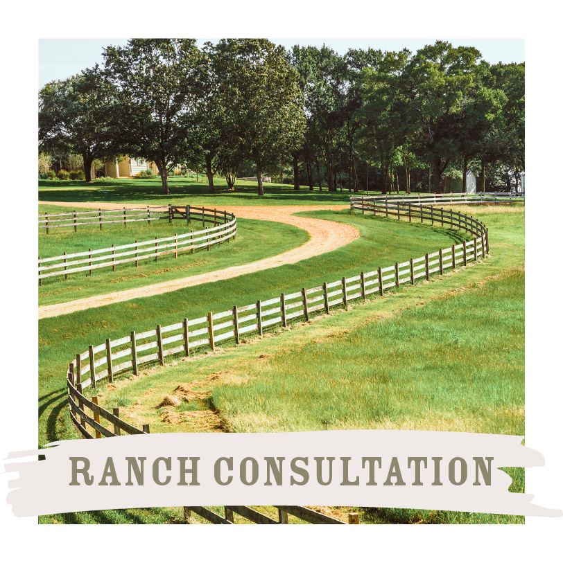 Ranch Consultation.png