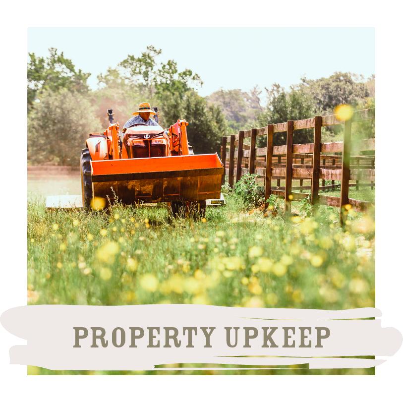 Property Upkeep.png