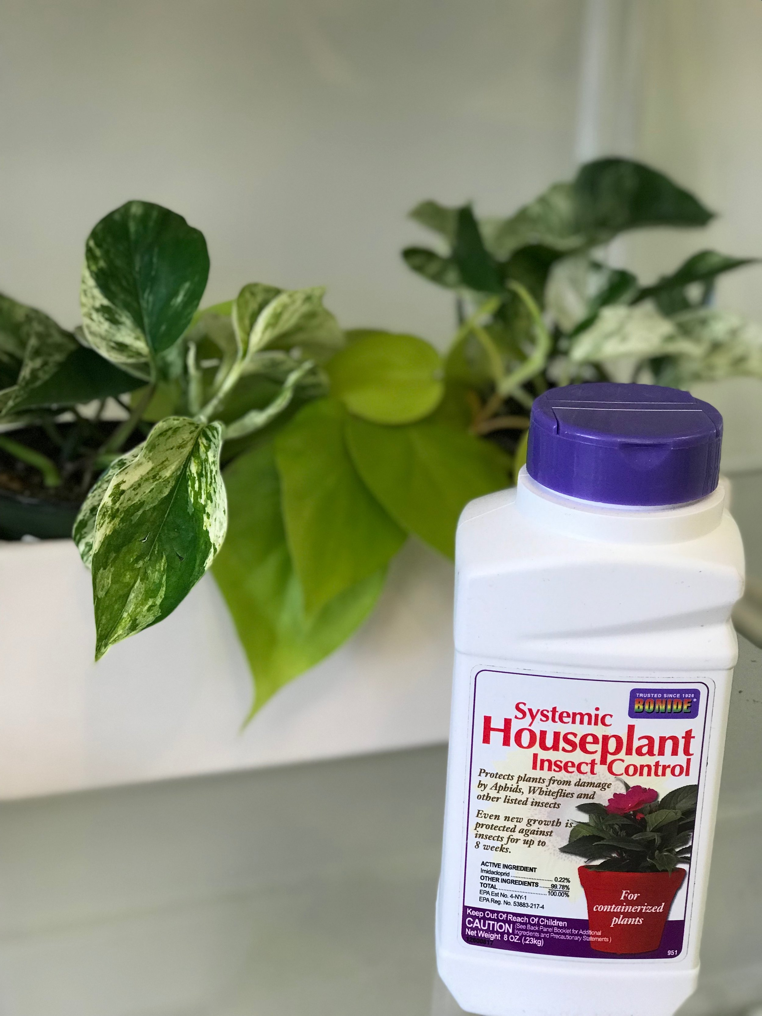 Insecticidal granules - Active ingredient: ImidaclopridProtects plants from several damaging insects for up to 2 months. Sprinkle and work granules into top 1-2 inches of soil and water in. Best applied at time of planting before pest problems occur.