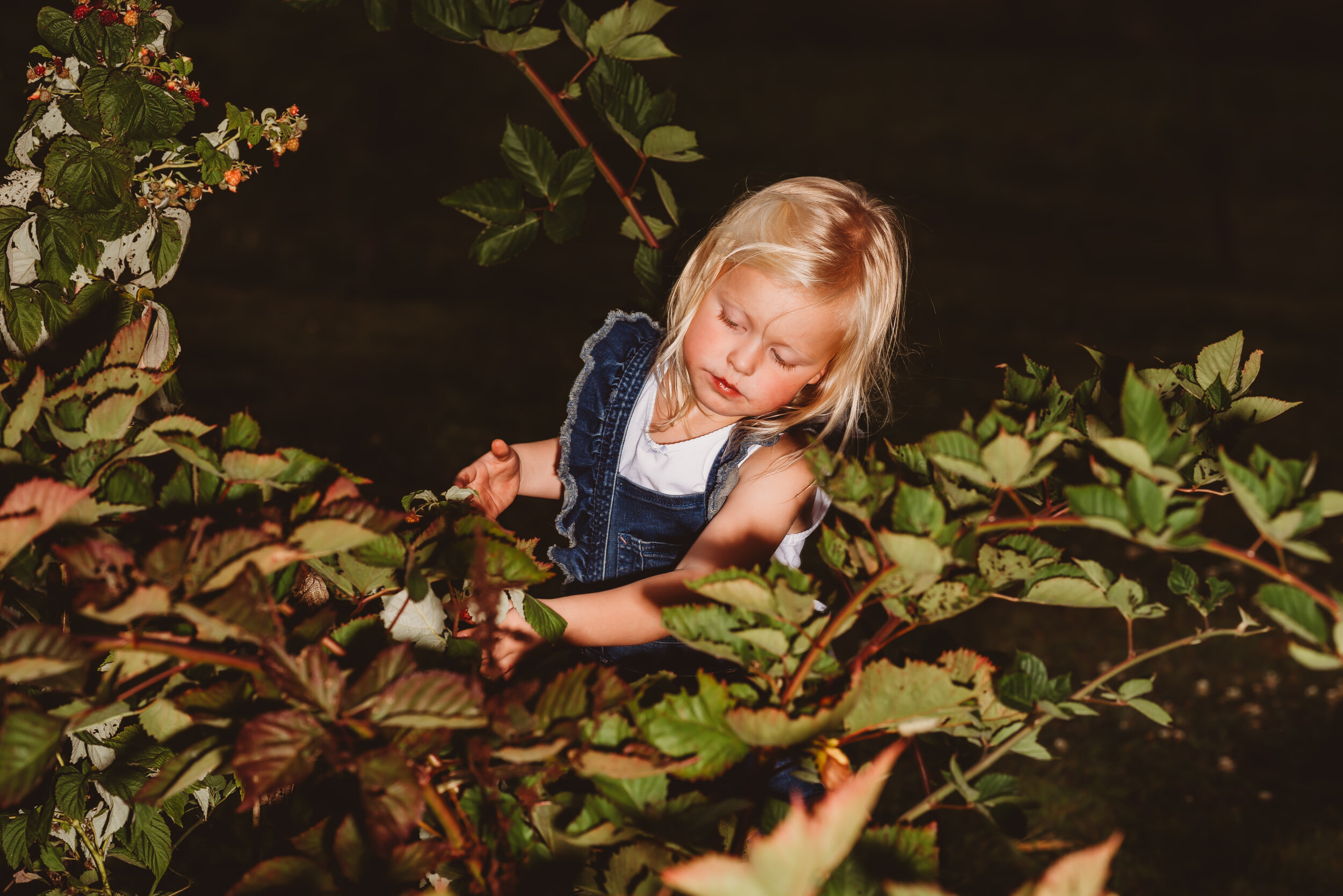 PICKING BERRIES -