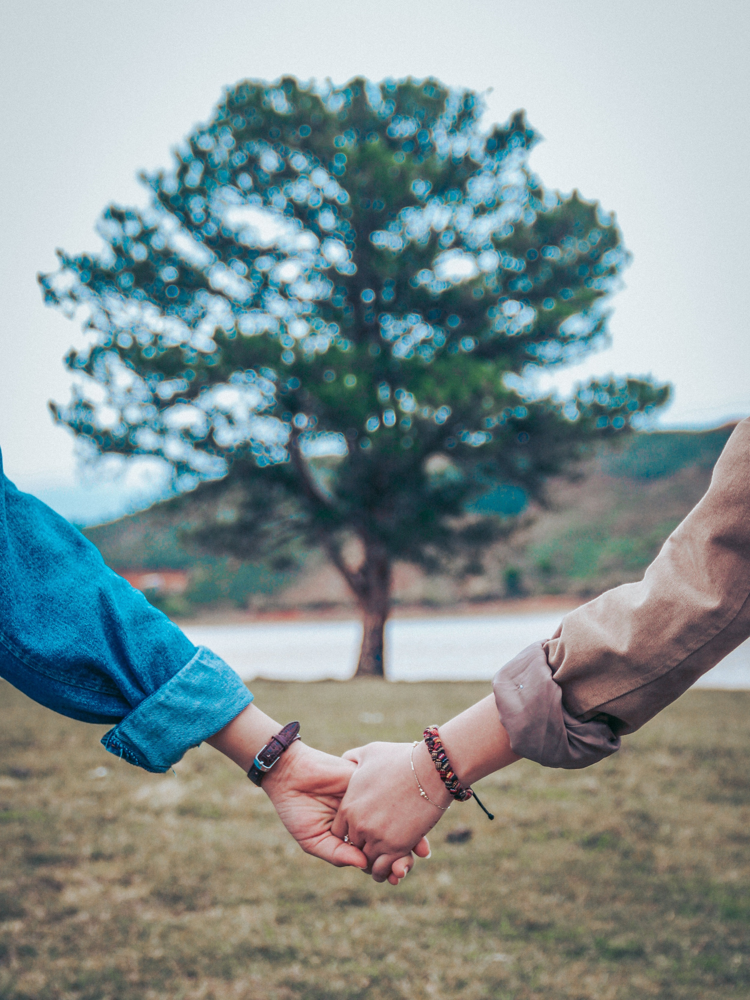 Private Relationship Coaching & Education -