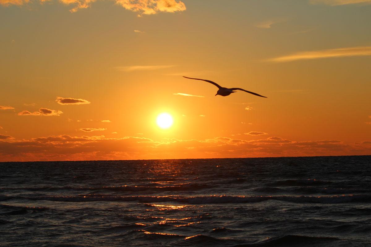 Olivia_Beaton_Photographer_Cape_Cod_Sunset_3.jpg