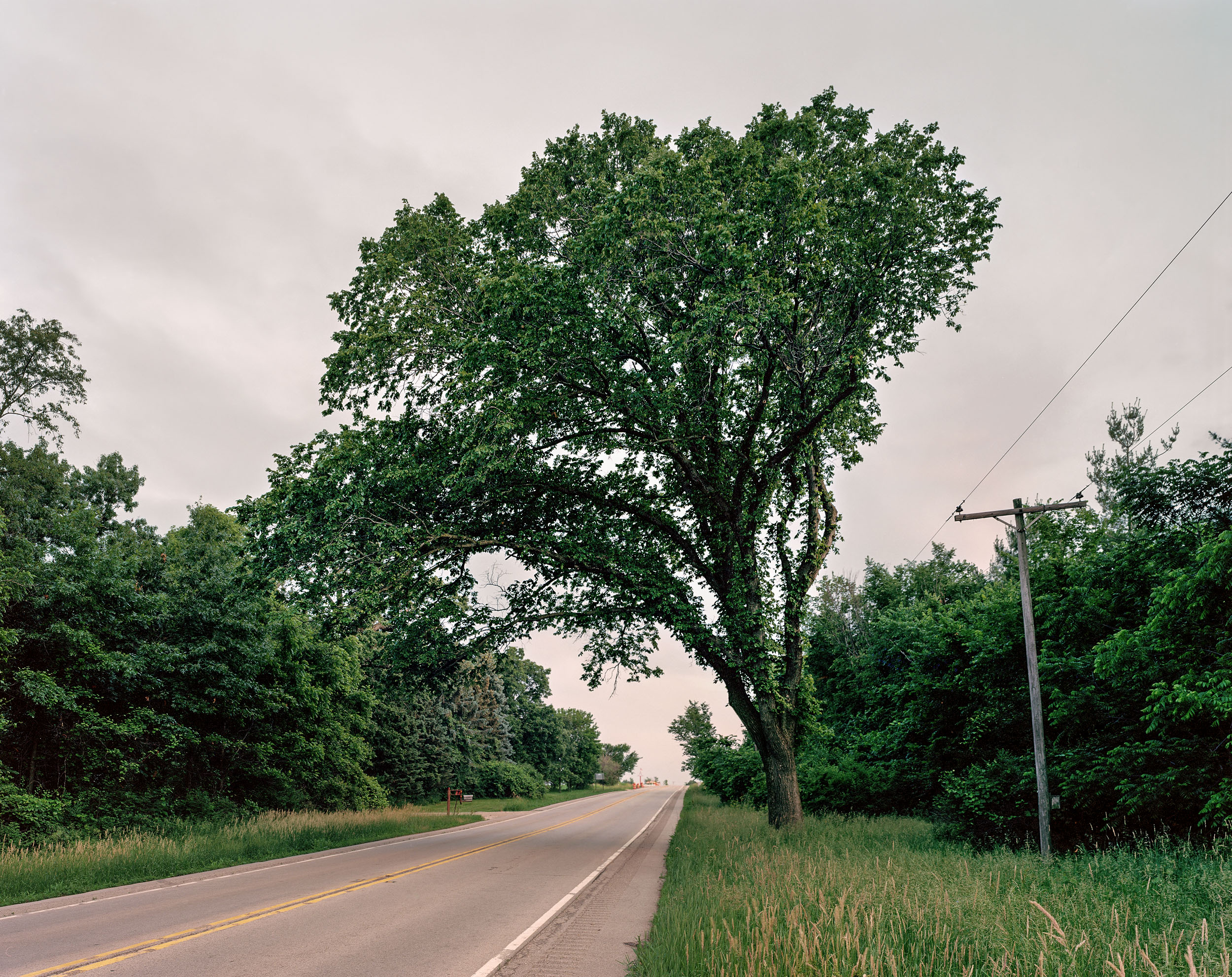 Highway Arbor, Central Illinois