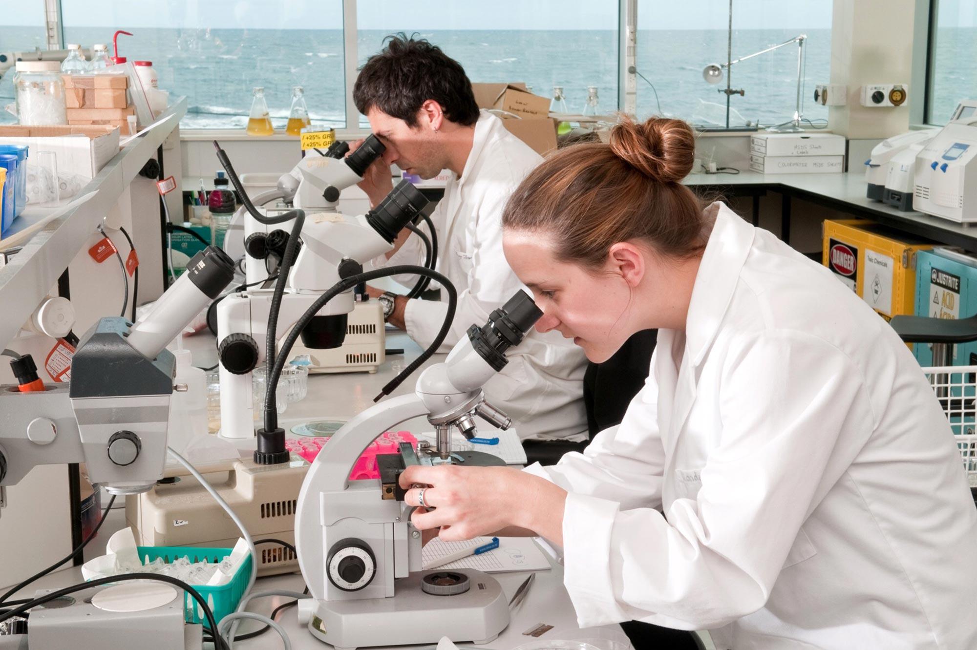 Coastal Ecology Lab Interior