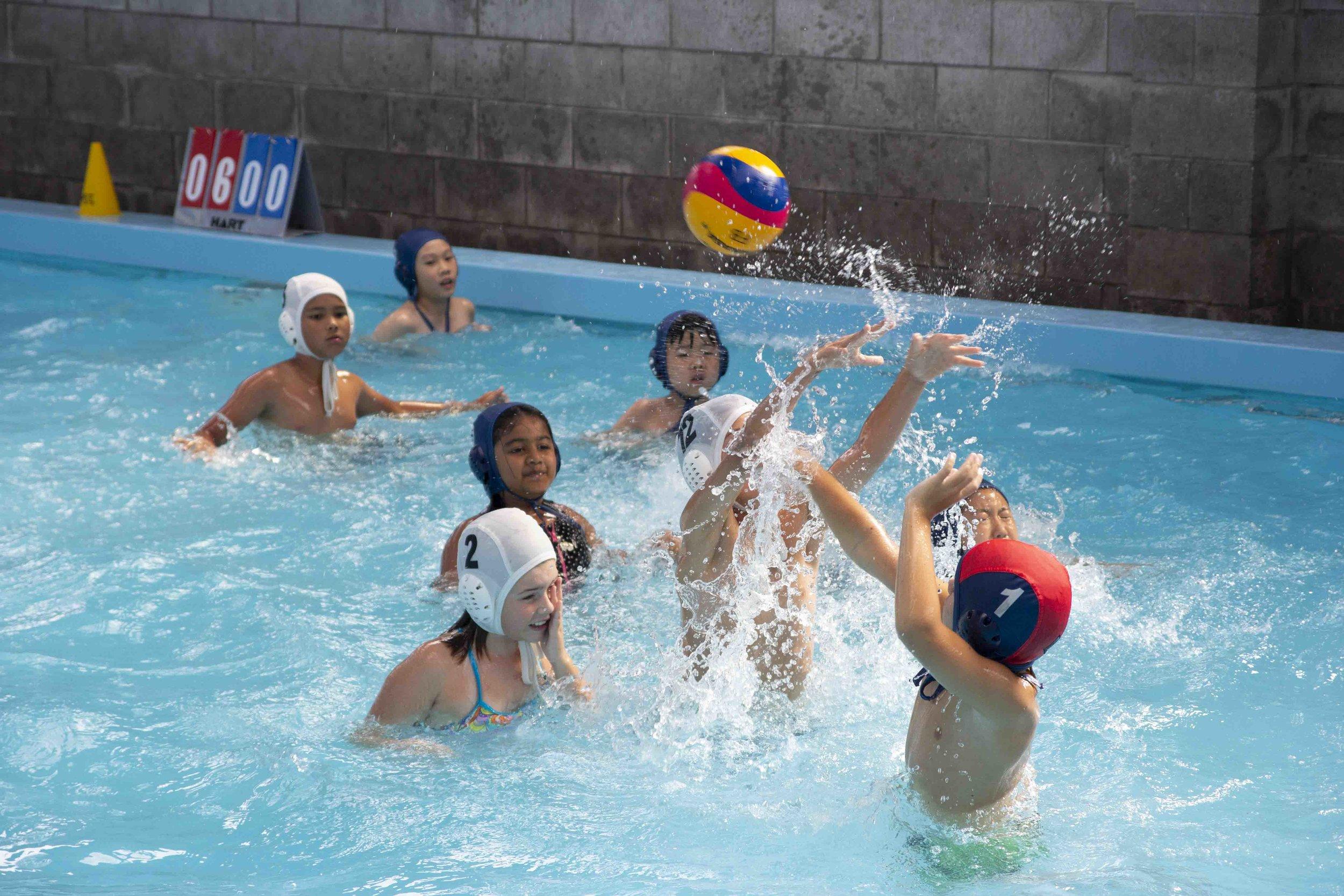 flippa-ball-4