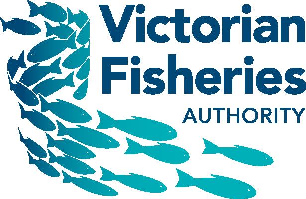 logo-VFA.png