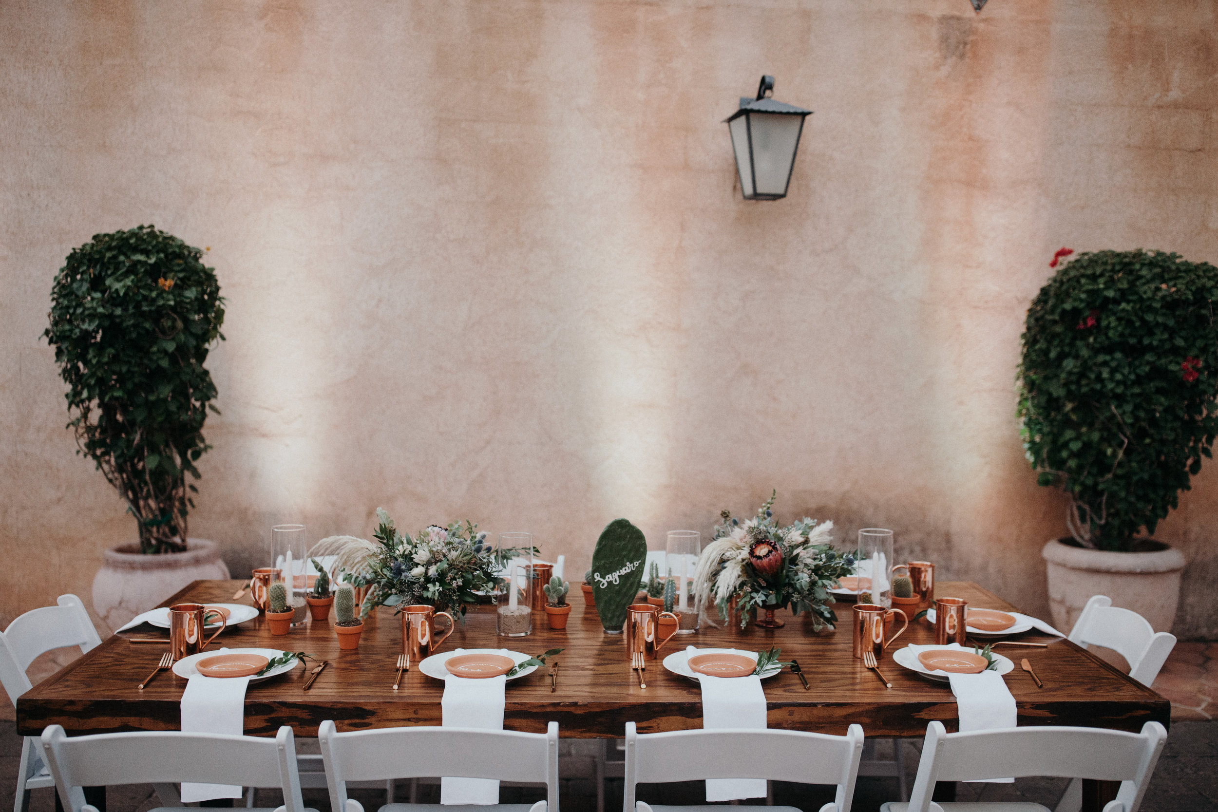 Sedona Wedding - Cactus Paddle Table Numbers