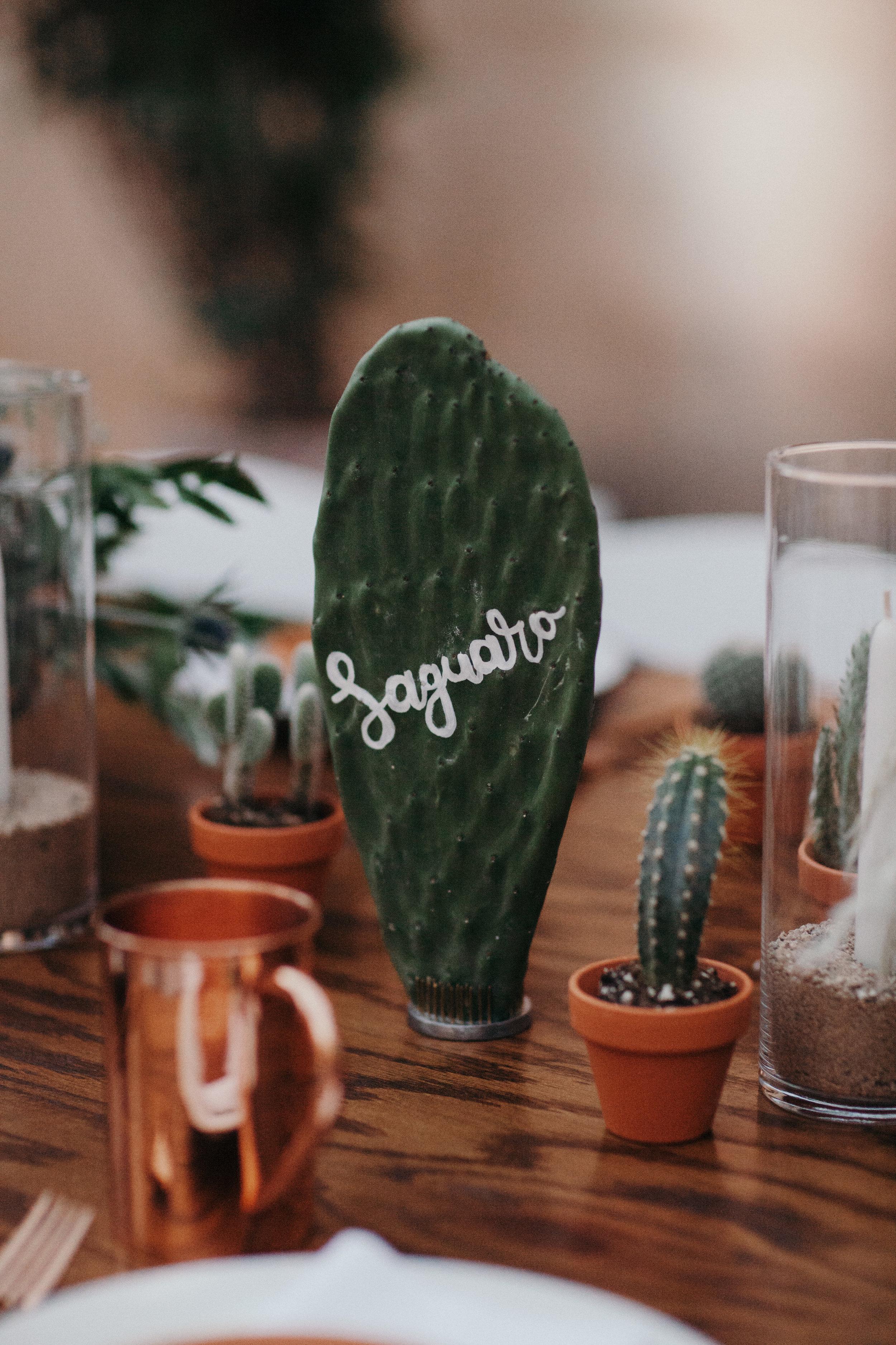 Sedona Wedding - Calligraphy Cactus Table Numbers