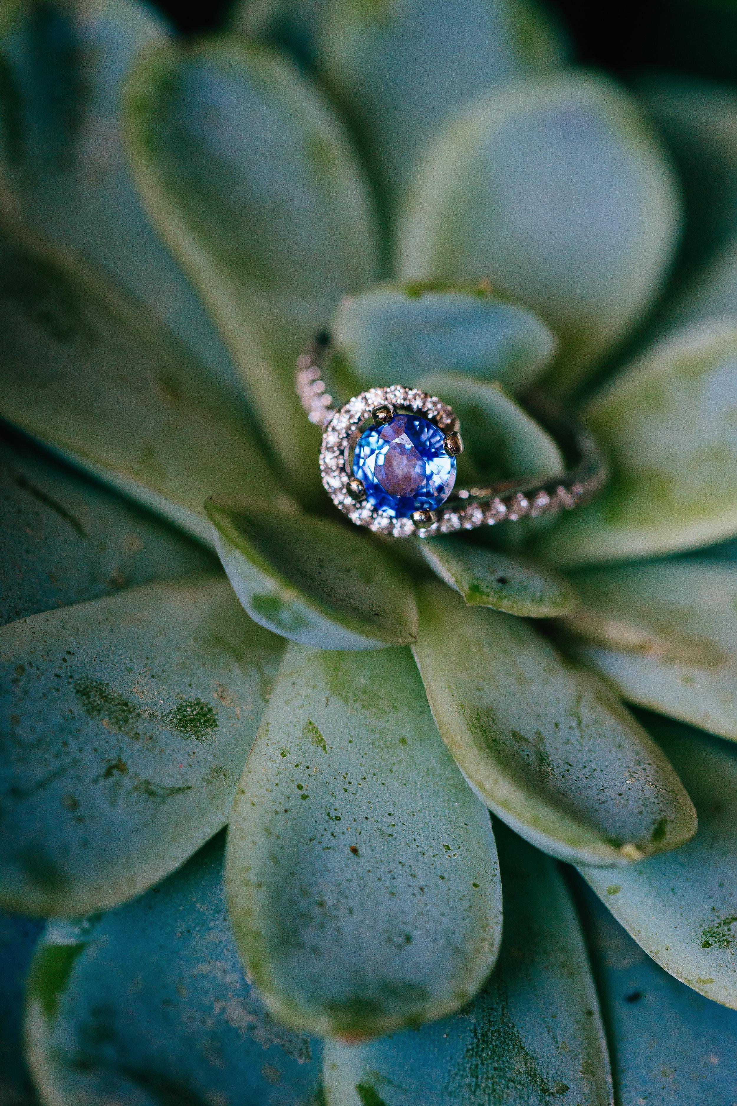 Desert Inspired Spring Wedding at Hotel Valley Ho - Succulent Ring Photo