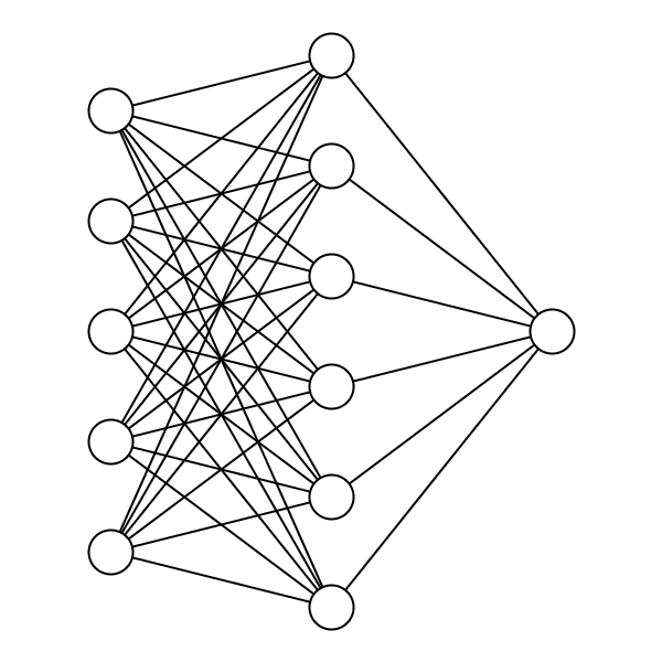 The nodes and weights of the Neural Network in the birds' brains