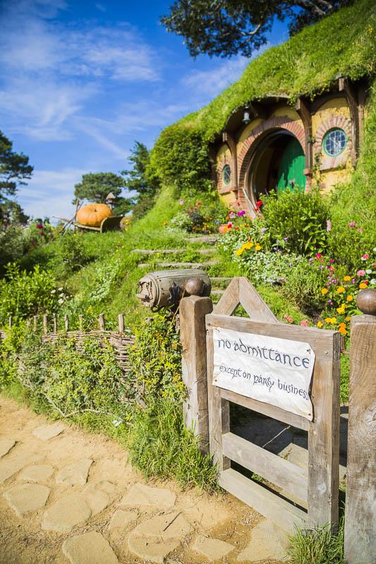 hobbiton-tour-new-zealand-two-dusty-lenses-5-common-mistakes-photographers-travelling-travel.jpg