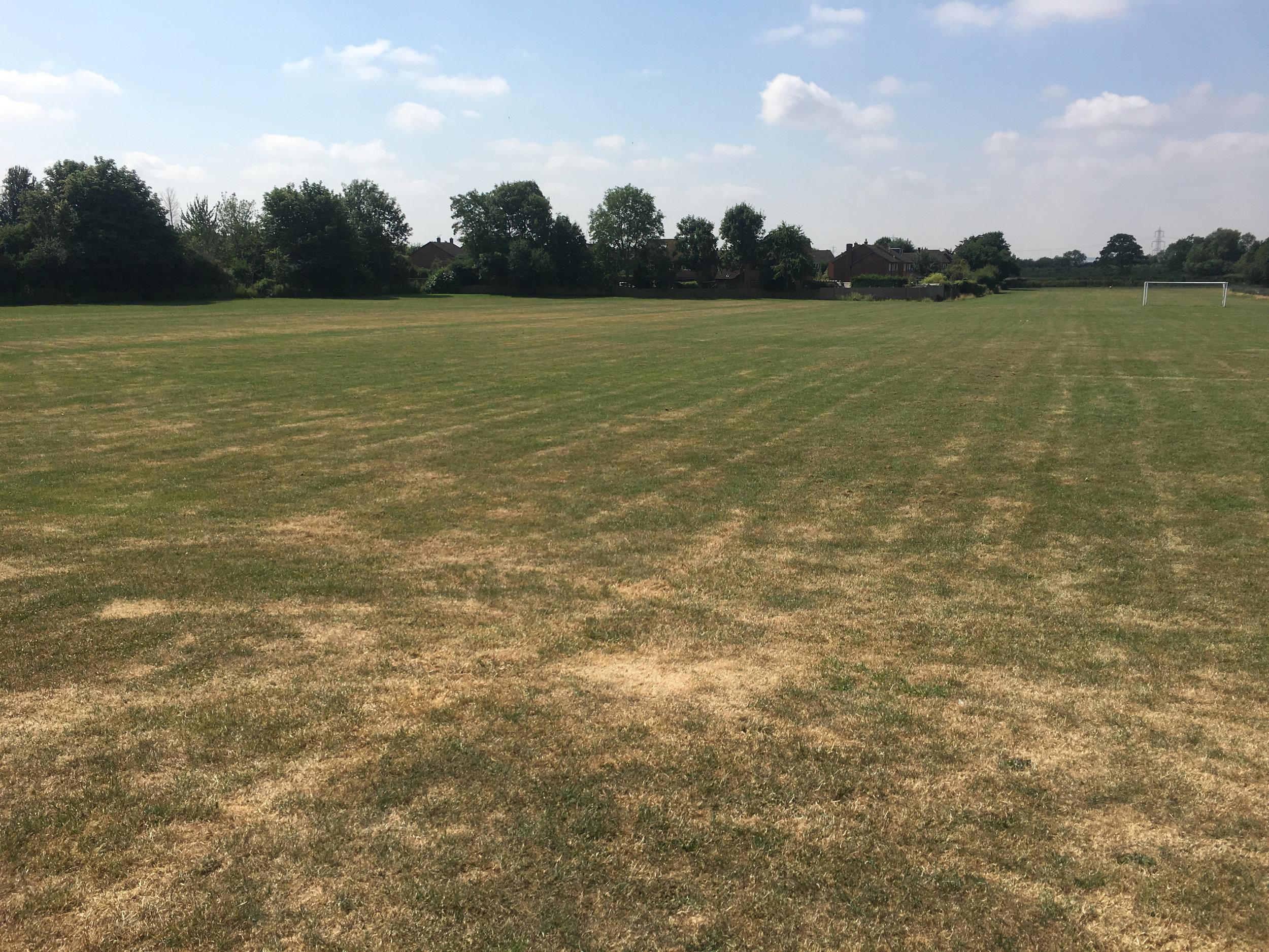 playing field 1.jpg