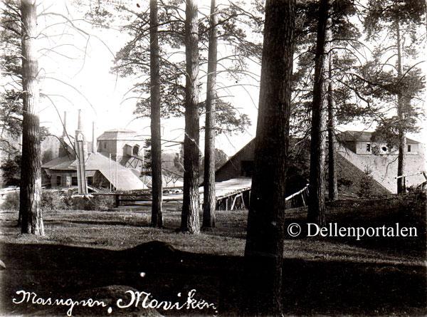 Bild från Dellenportalen