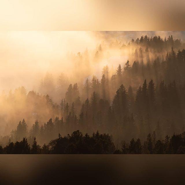 Un coucher de soleil d'hiver... . . #grenoble #grenobletourism #alps #landscapes #landscape #france #paysage #igersgrenoble #chamrousse