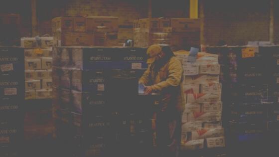 Cold Chain Logistics: LTL — Pyramid Transport | We Help