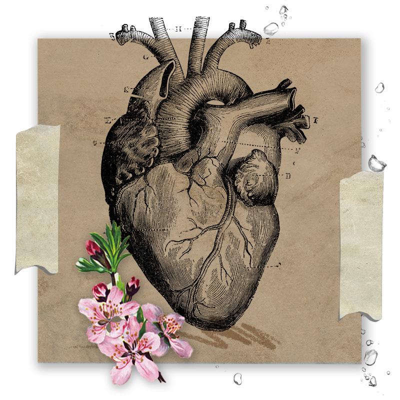 Heart_Vendimia.jpg