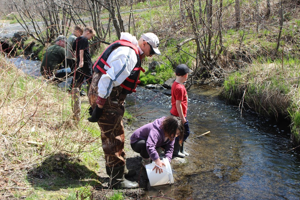 130517_md_trout_release01.JPG;w=960;h=640;bgcolor=000000.jpg