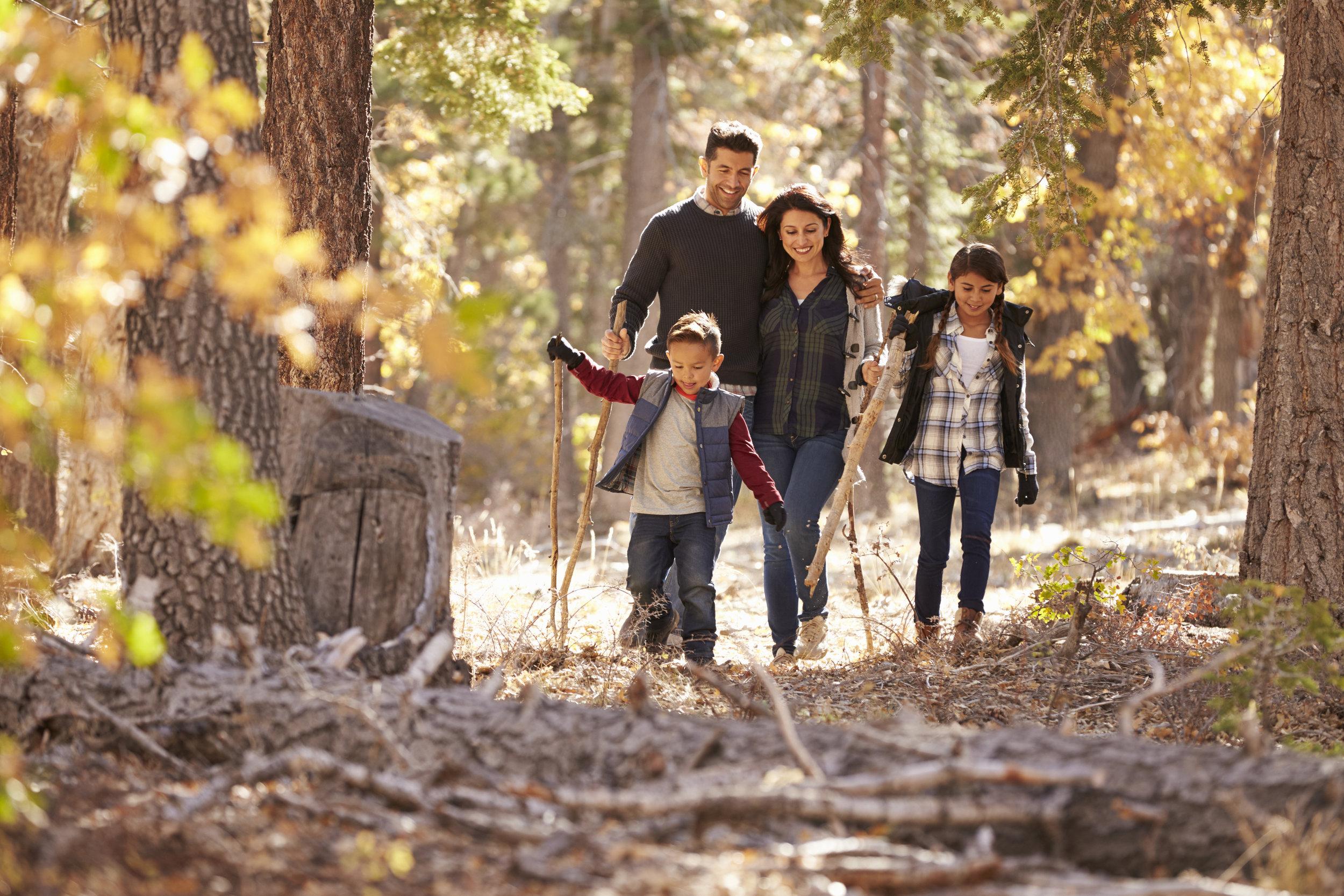 Family hiking in woods on Aberdeen walking trail