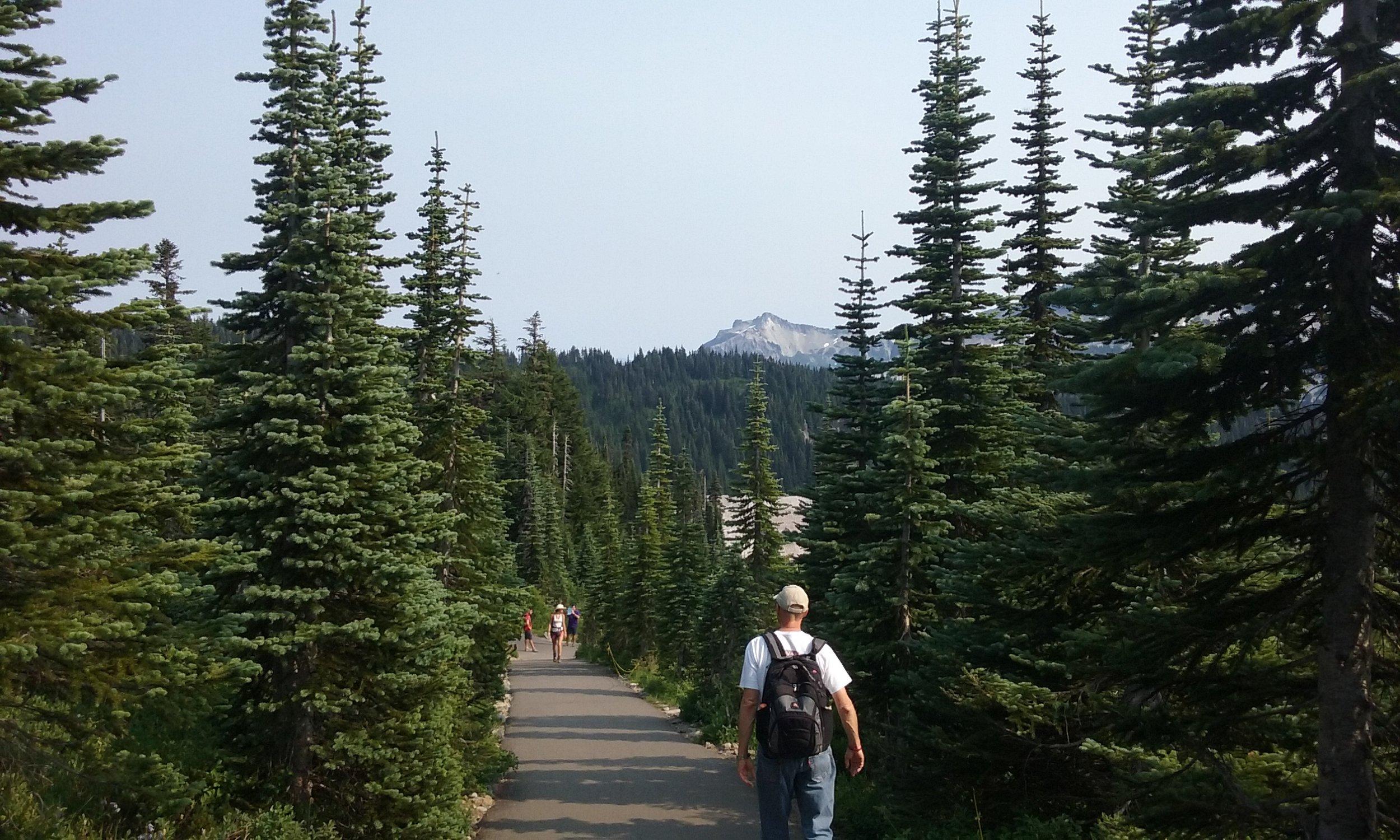 paradise trail1.jpg