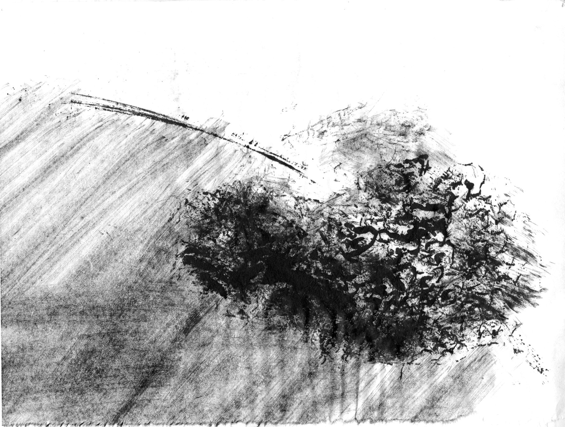 Field Study. Ink on Rice Paper