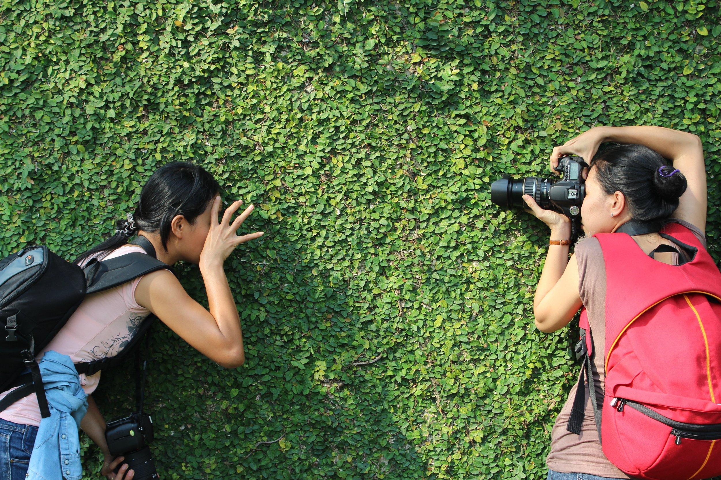 Photo by  Tam Nguyen  on  Unsplash