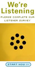 podtrac_survey_125x240_v2.jpg