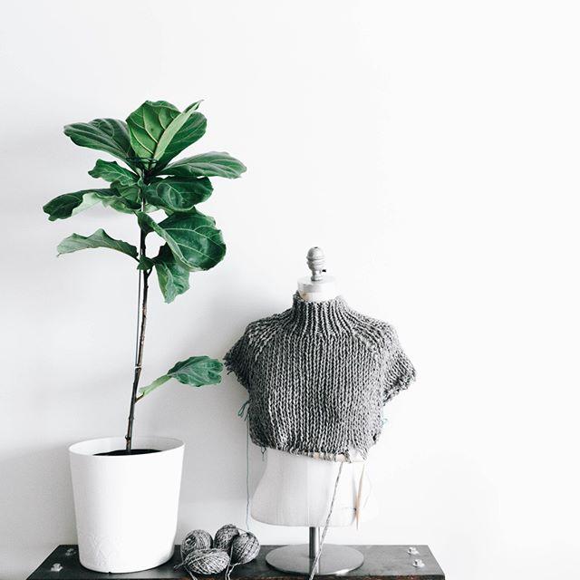 This sweater now has a finished body and some sleeves~⠀ .⠀ .⠀ .⠀ ⠀#knitwear #knitting #knitstagram #knitspo #knittingindc #knitspo #ravelry #ourmakerlife #yarn #yarninspo #yarnaddiction #lionbrandyarn #knittersoftheworld #dcknitters #dcknits  #yarnpunk #thehooknookers #instaknit #instaknitters #instaknitting #nevernotknitting #knitters #handknit #knittingaddict #plantlove #fiddleleaffig