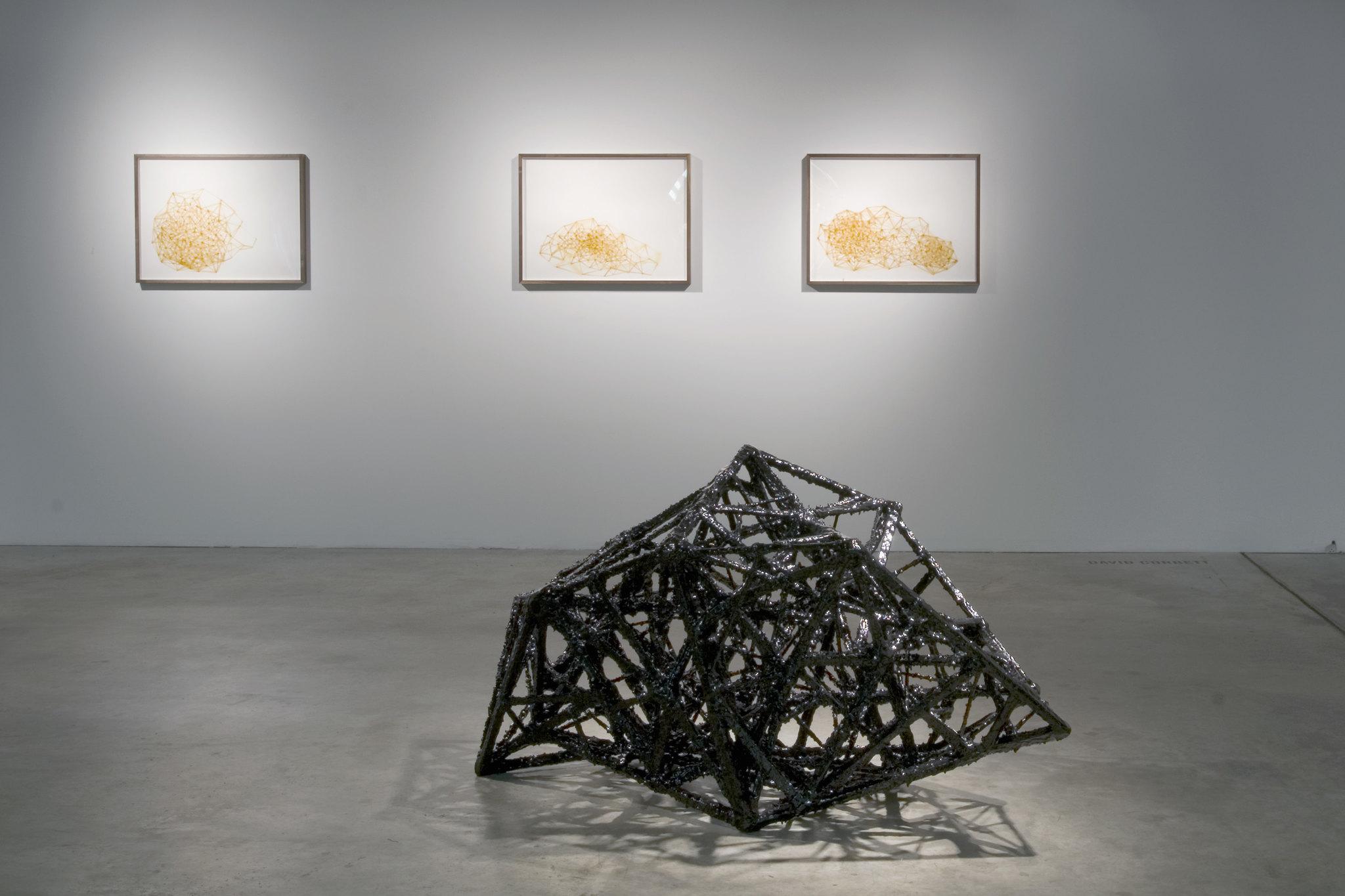 David Corbett Installation   Recent Work exhibited at Disjecta