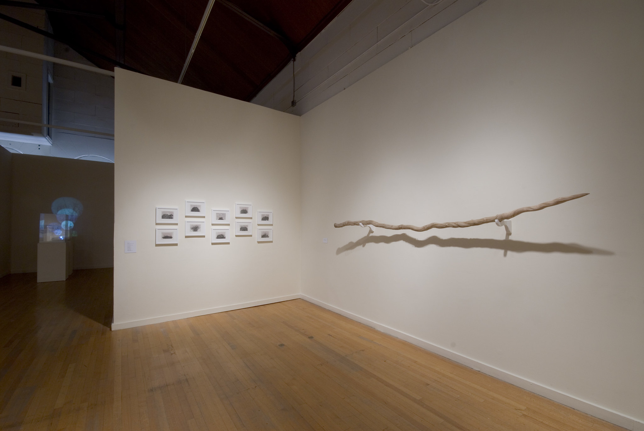 Melody Owen Installation   Letters From Switzerland exhibited at Elizabeth Leach Gallery