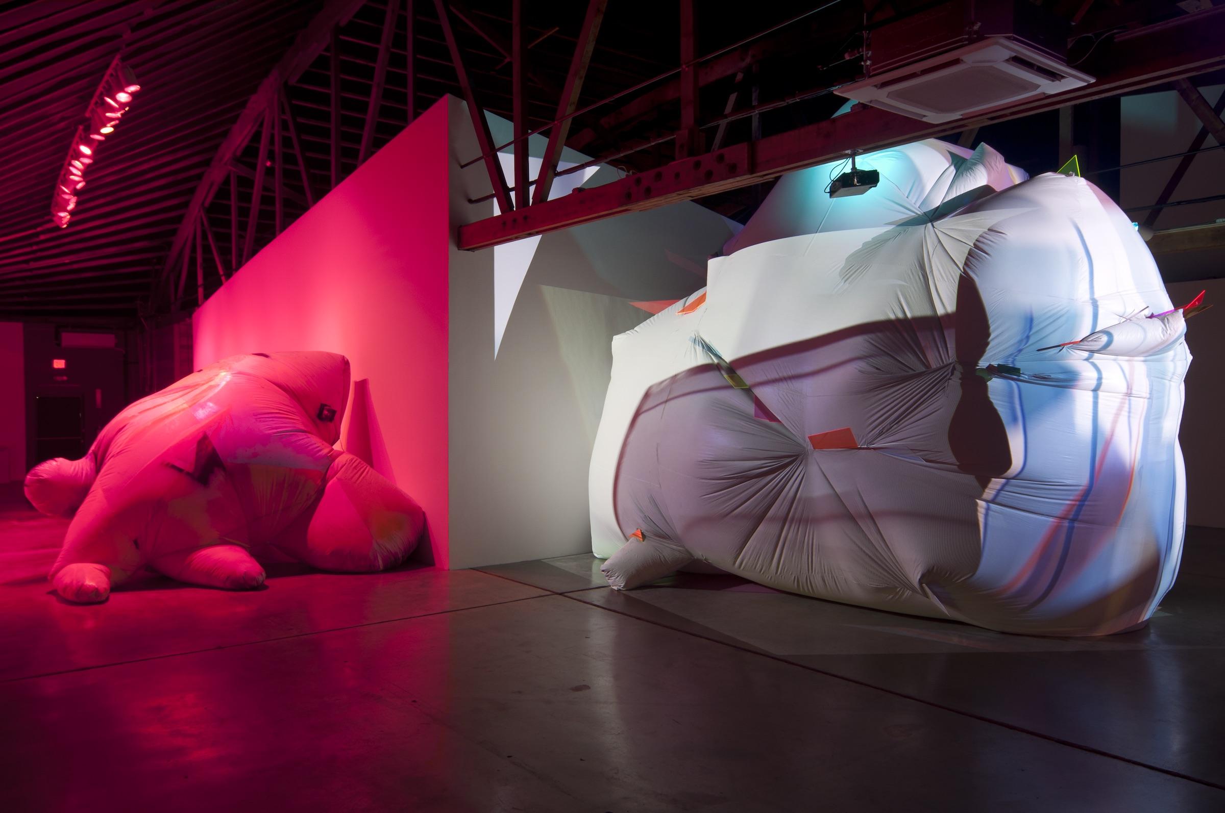 Season 4: Curator Rachel Adams -