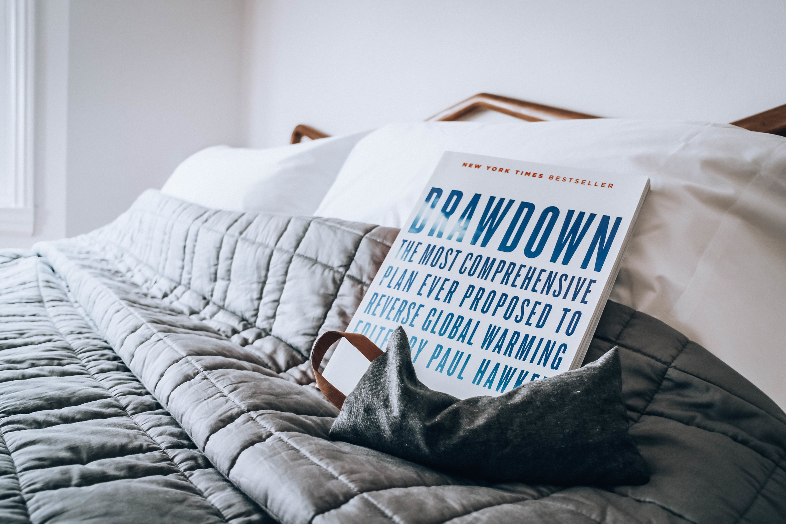 Incredibly inspiring reading:  Project Drawdown , sheets and comforter from  Couyuchi , Eye mask from  Project Full  and bed frame from garage sale.