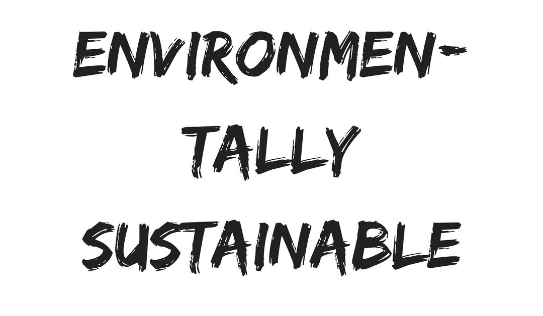 Environmentally Sustainable.jpg