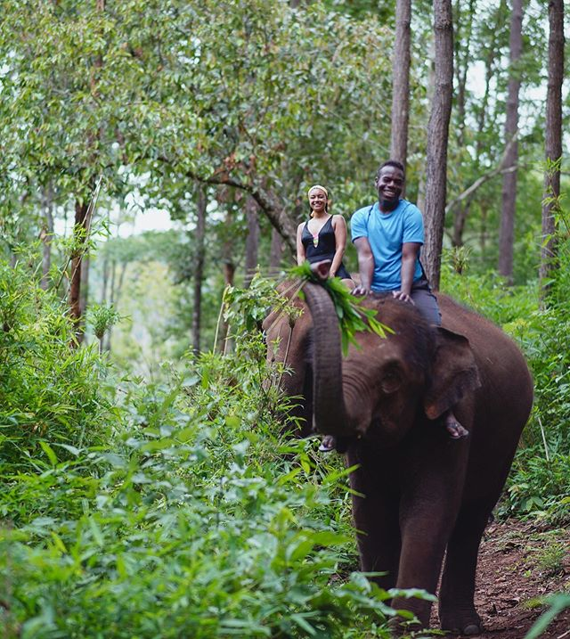 No better way to get to know these gentle giants than on their own terms!🐘We are staying on an elephant sanctuary/eco lodge for 2 nights to get a raw and real elephant experience.🕺🏾🇹🇭 #thailandtakeover . . .  #thailand #chidiashleytravels #thailand_ig #blacktravelfeed #blacktravelgram #blackgirlstraveltoo #chidiashleytravels #blacktraveljourney #blacktravelmatters #amazingthailand #thailandtravel #chailaiorchid #chiangmai #elephant #chiangmaielephant