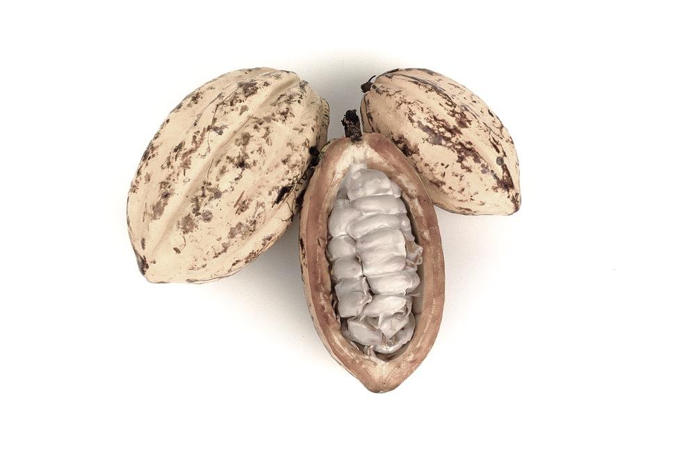 cocoa_butter.JPG