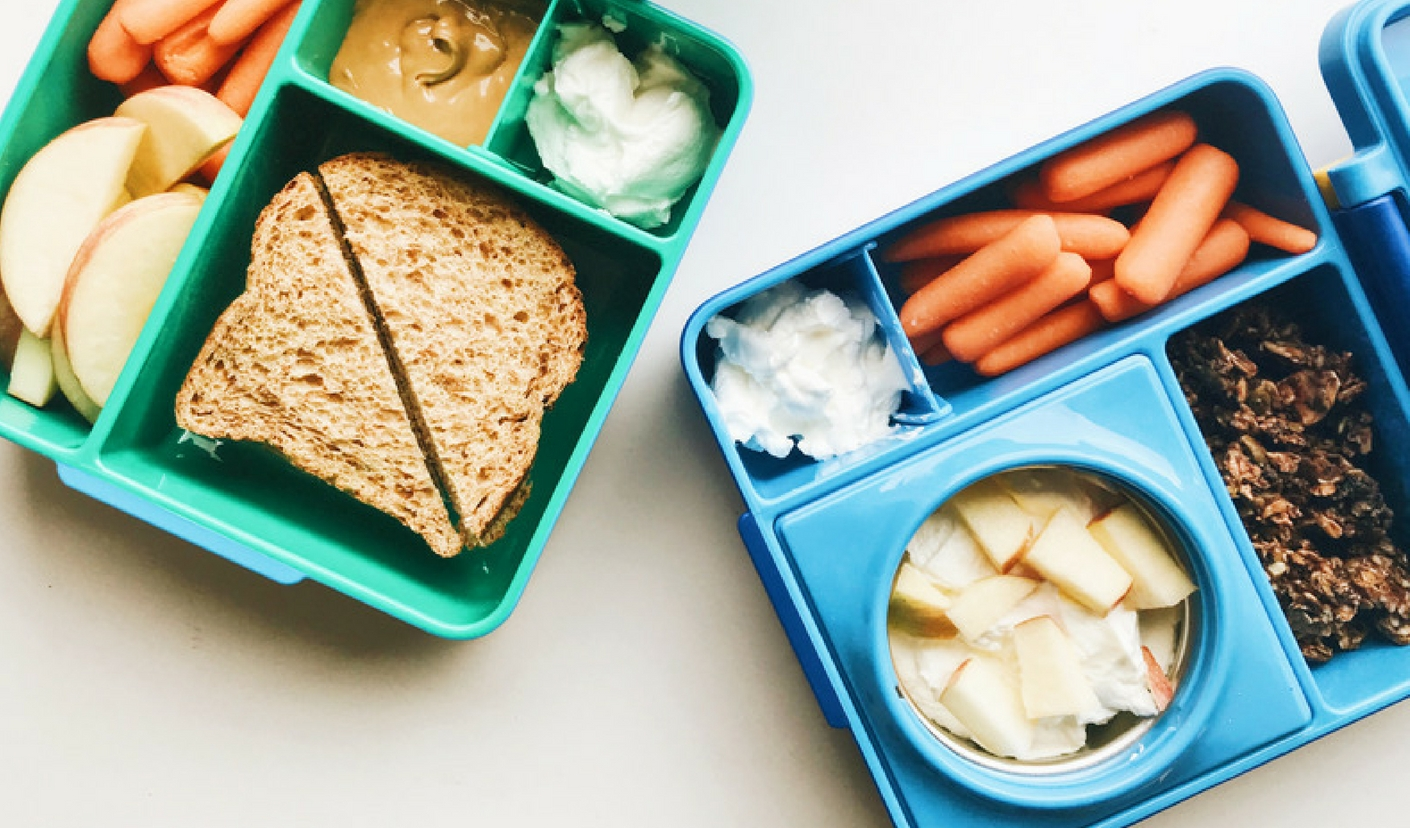 the healthy lunchbox -