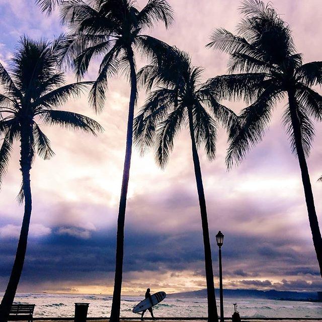 Hurricane Hector 🌊 who's out there surfing?! . . . . . #luckyhawaii #nakedhawaii #pockethawaii #hilife #hawaiiunchained #wonderful_places #darlingescapes #photographyhawaii #analisalomeliphotography #photopdaily #instagood #exploretocreate #goodvibes #hawaiiphotographer #photographyhawaii #analisalomeliphotography #exploretocreate #beautifuldestinations #canon #canon_photos #lifeofadventure #mobilemag #huffpostgram #natgeotravel #nature_addict #photographyhawaii #hawaiiphotos #quietthechaos #vscomag #vscohawai