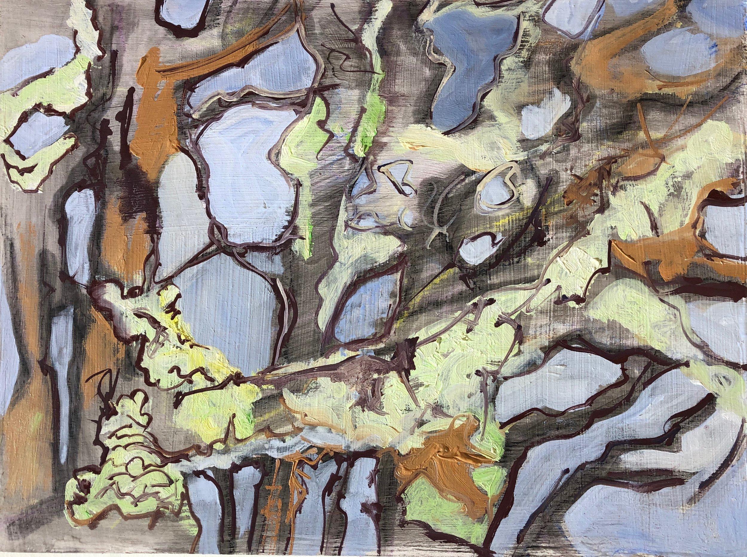 IMG_0501 oak tree study.jpg