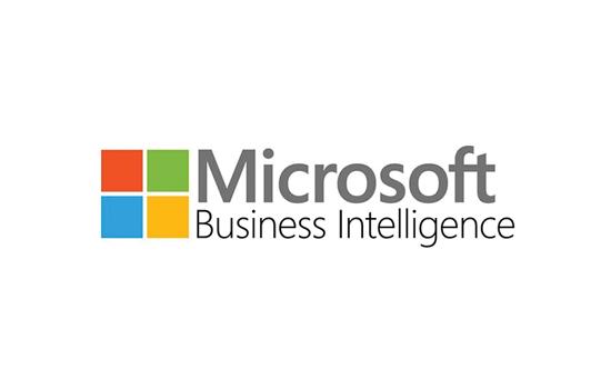 Custom Software - Logo - Microsoft Business Intelligence.jpg