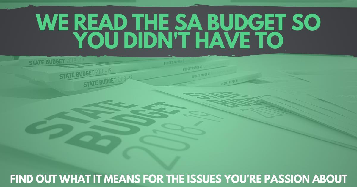 SA budget 2018