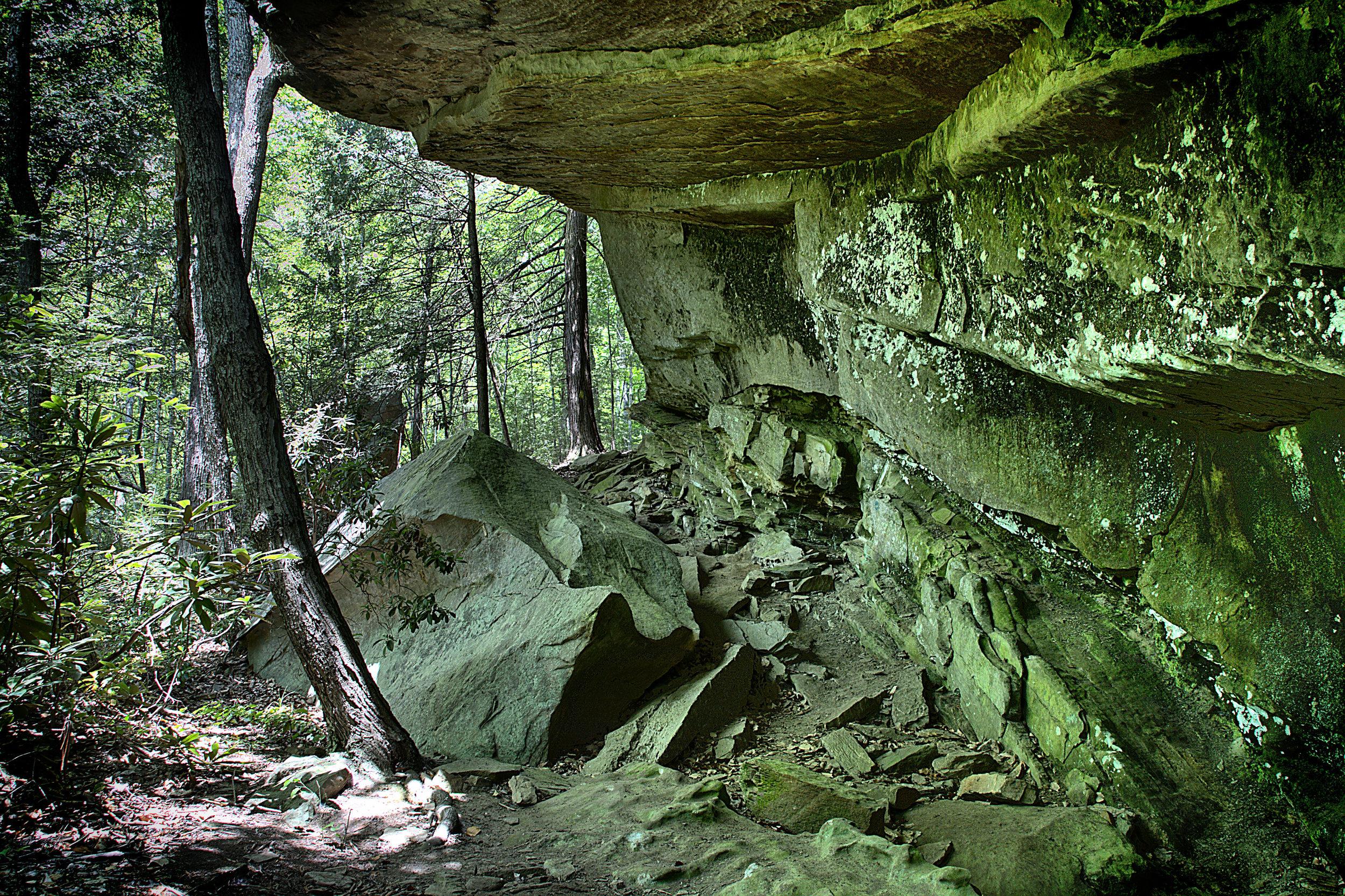 Blanton Forest - Overhang.jpg