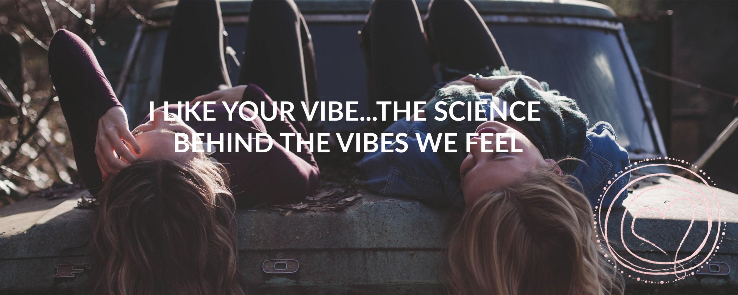 I like your vibe banner.jpg